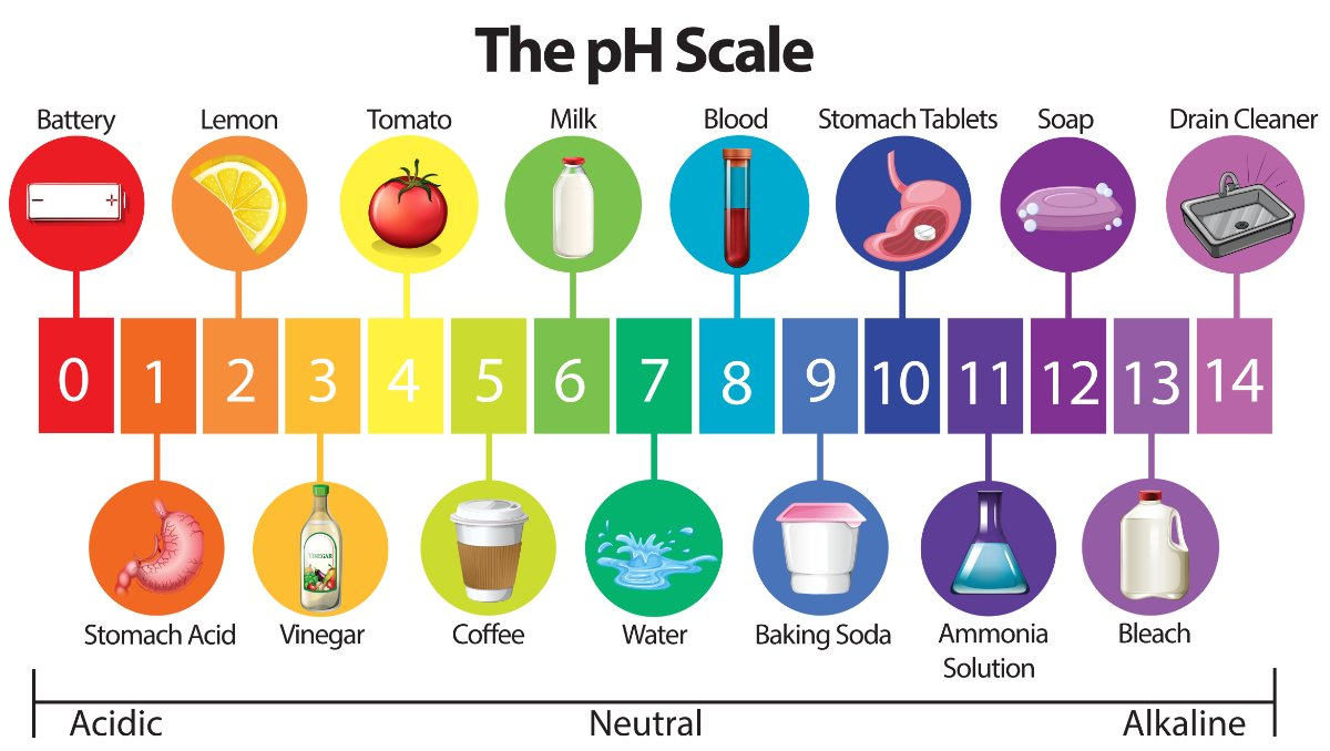 Water Quality 101: What Is pH in Water Testing?