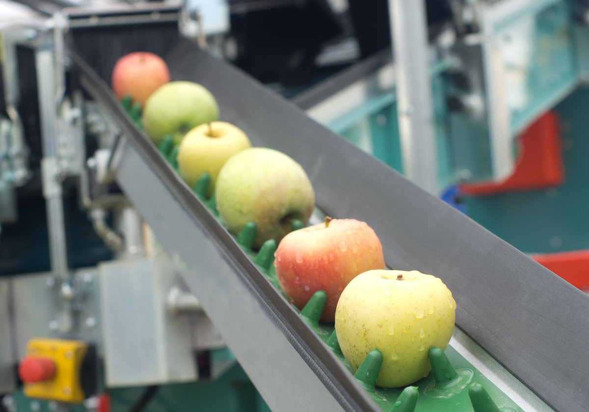 food_beverage_apples_factory